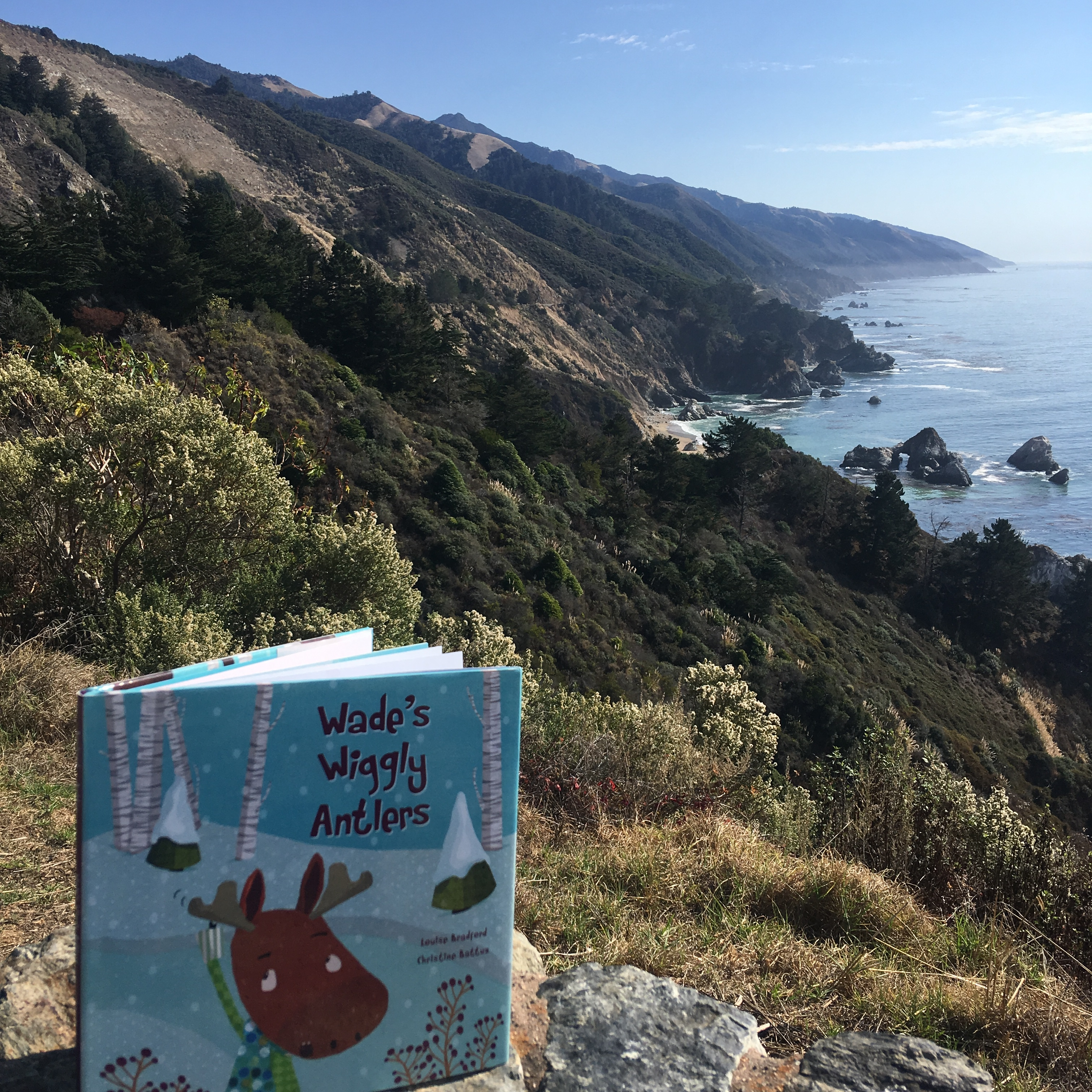 Wade's-Wiggly-Antlers-Big-Sur-Louise-Bradford
